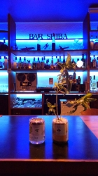 Bar Shiba
