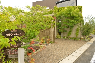 住宅地にひっそり佇むコンクリート×植物の外観