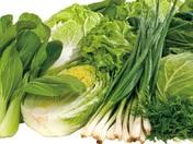 おススメはお肉だけじゃない! 毎日産地からお店に届くお野菜☆ 国産にこだわった安心・安全野菜は鮮度抜群です☆