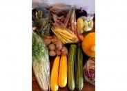 無農薬野菜や地元の食材を使ったこだわりの料理を堪能しよう★