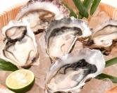 「生牡蛎」1個280円(税別)