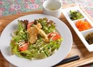 野菜たっぷりヘルシーサラダうどん(期間限定)1,080円(税込)